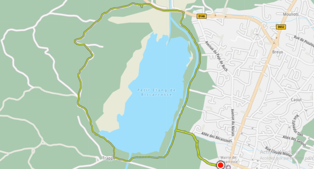 plaisir - 05/08 - marche plaisir :  Autour du petit lac de Biscarrosse Sans_638