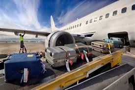 Voyage en avion : recours en cas de retards, pertes ou détérioration des bagages Tzolzo53