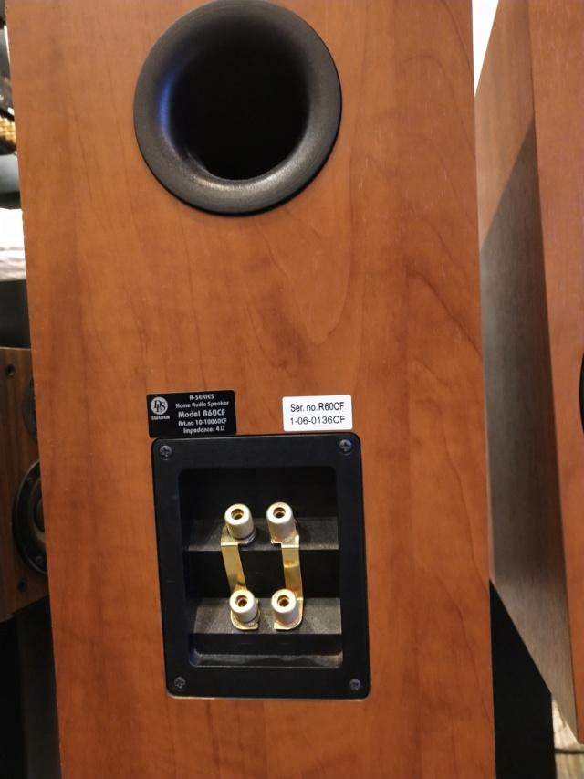DLS - R60 Bookshelf Speaker (Used) Img_2127