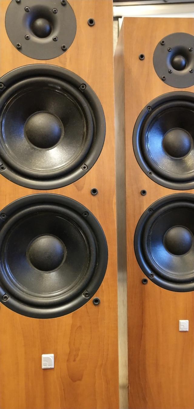 AudioPro -EGO515 - Floorstand Speaker (Used) Img_2131