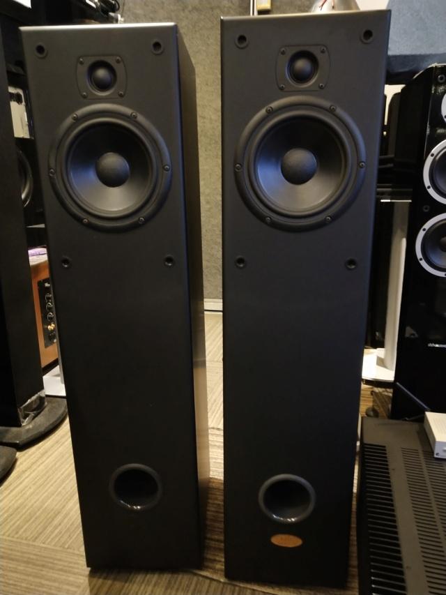 LST Audiolab - Anima - Floorstand Speaker (Used) Img_2197