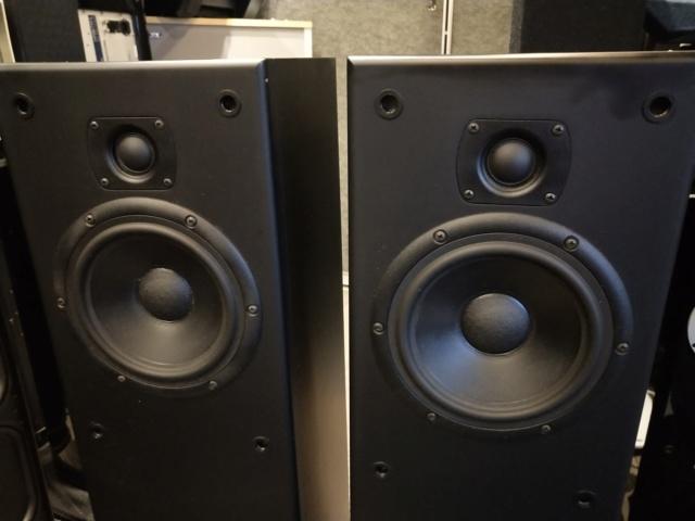 LST Audiolab - Anima - Floorstand Speaker (Used) Img_2198