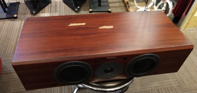 Dynaudio - Focus 200C - Center Speaker (Sold) Img_2295