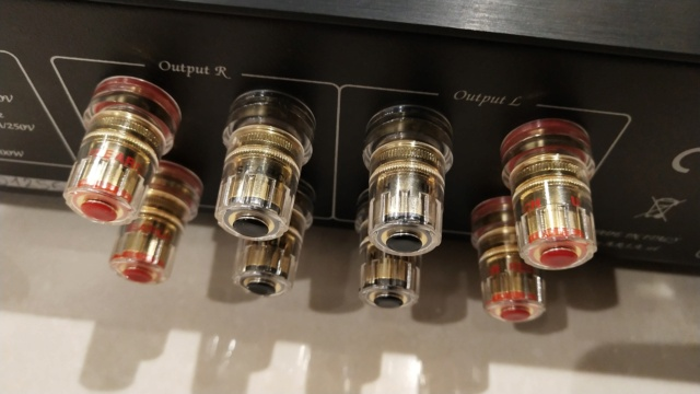 Unison Research - Unico Primo - integrated amplifier (Used) Img_2421