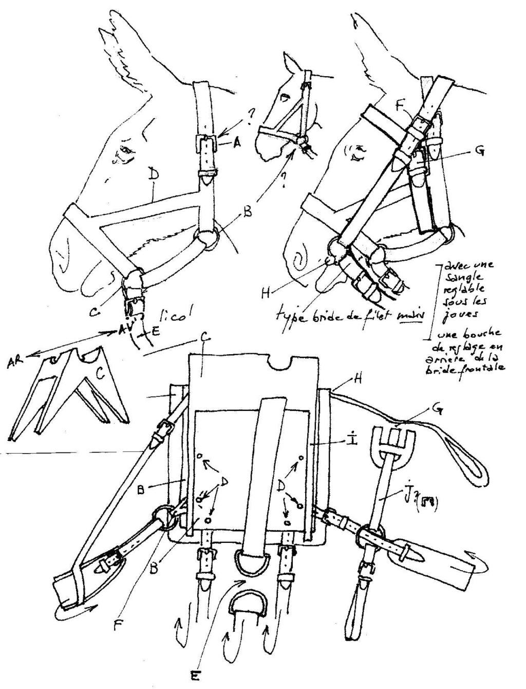 Mulet d'artillerie Sénégal 1856 Brelag10