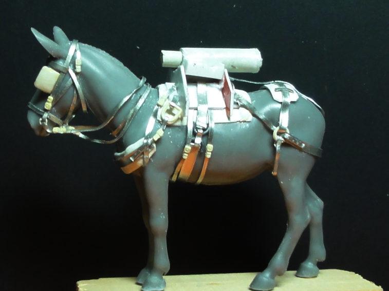 Mulet d'artillerie Sénégal 1856 Dsc00116