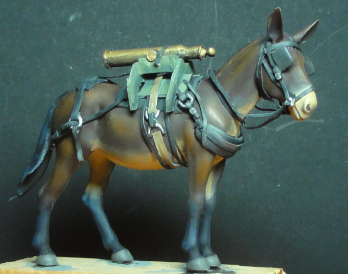 Mulet d'artillerie Sénégal 1856 Dsc00124