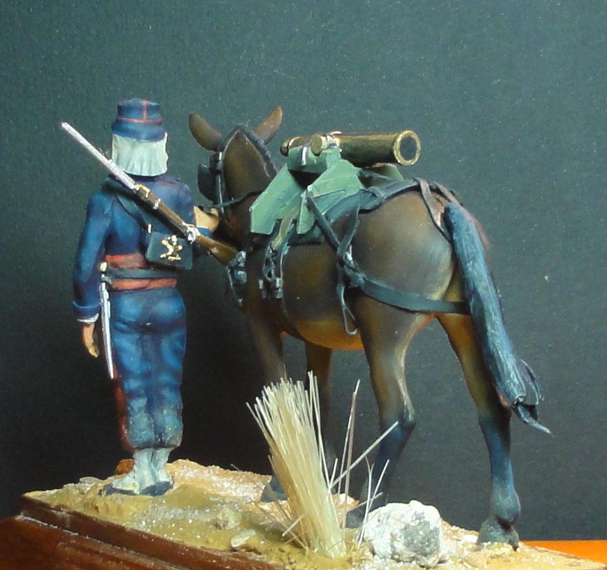 Mulet d'artillerie Sénégal 1856 Dsc00210