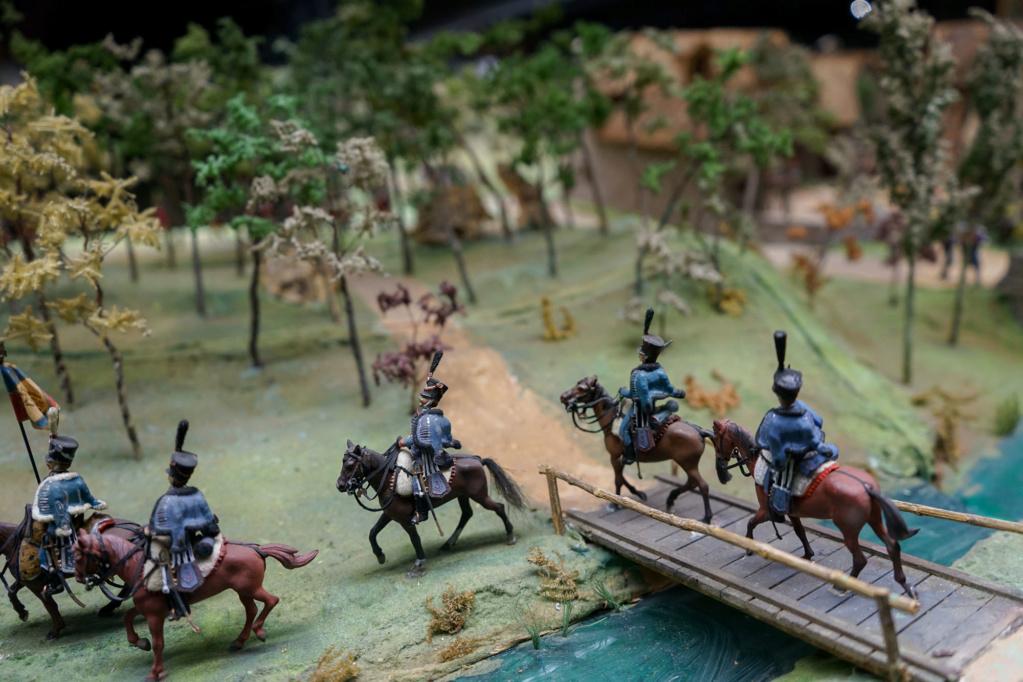 Les dioramas du Musée de Compiègne Dsc03211