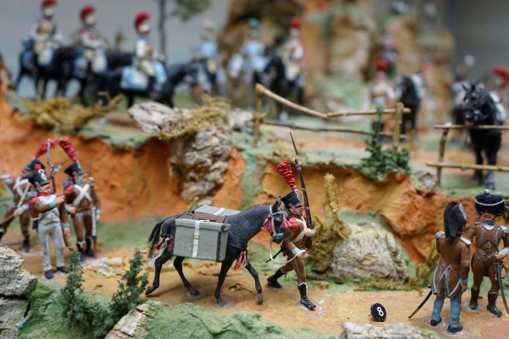 Les dioramas du Musée de Compiègne Dsc03212