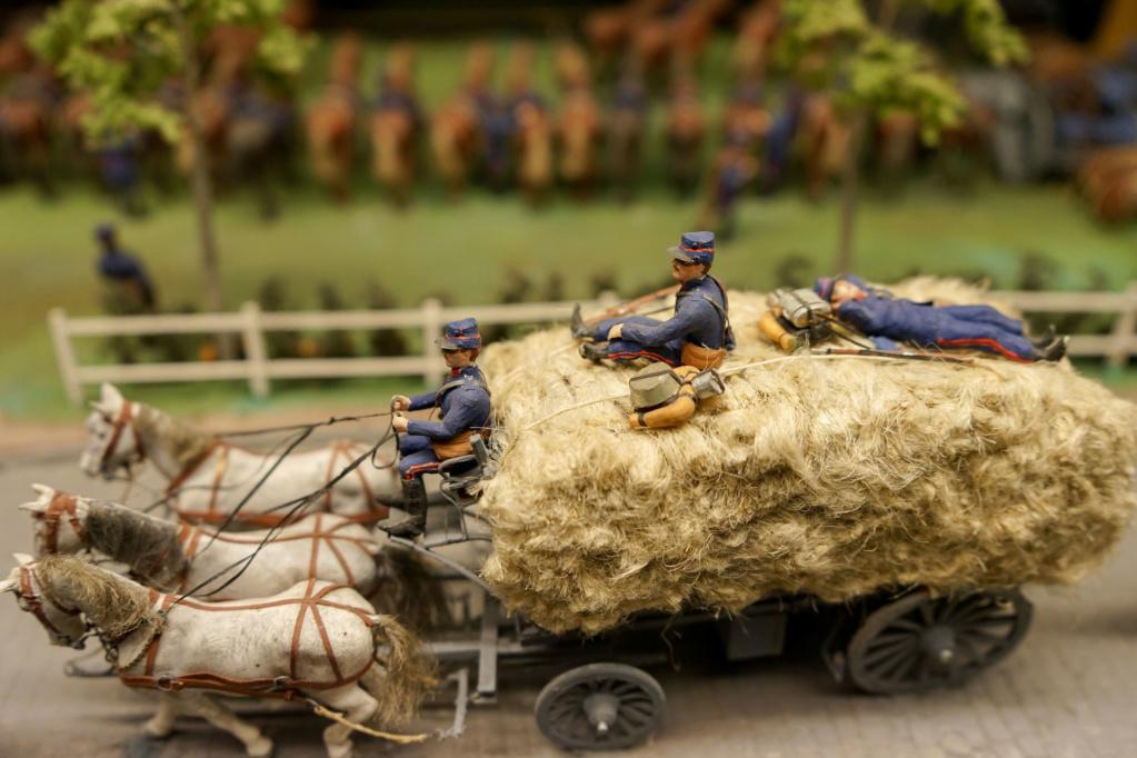 Les dioramas du Musée de Compiègne Dsc03213