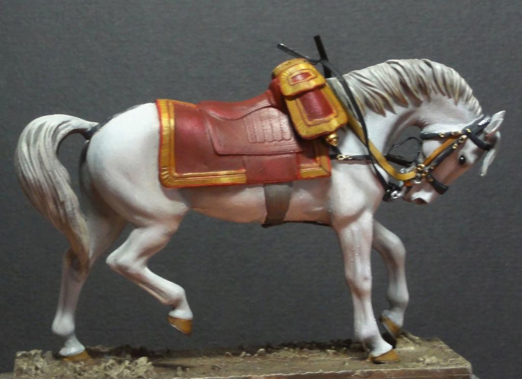 Encolure de cheval Dsc09737