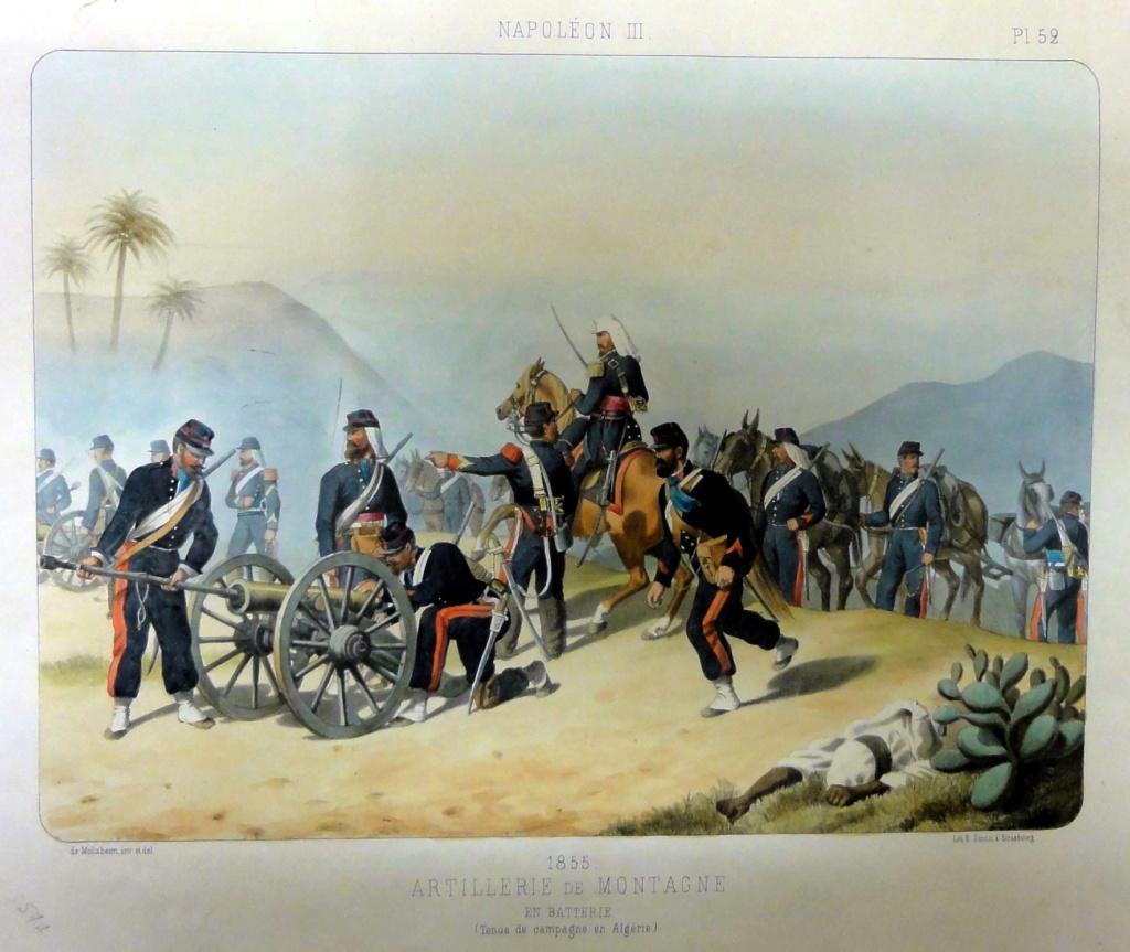 Mulet d'artillerie Sénégal 1856 Moltzh10