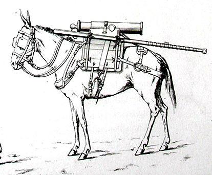 Mulet d'artillerie Sénégal 1856 Mulet_10