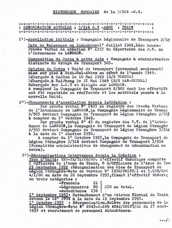Insignes d'unité spécialisées. - Page 3 Ctle_311
