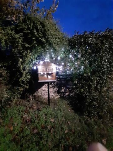 Eclairages de jardin 2019 (cecee) Img_1111