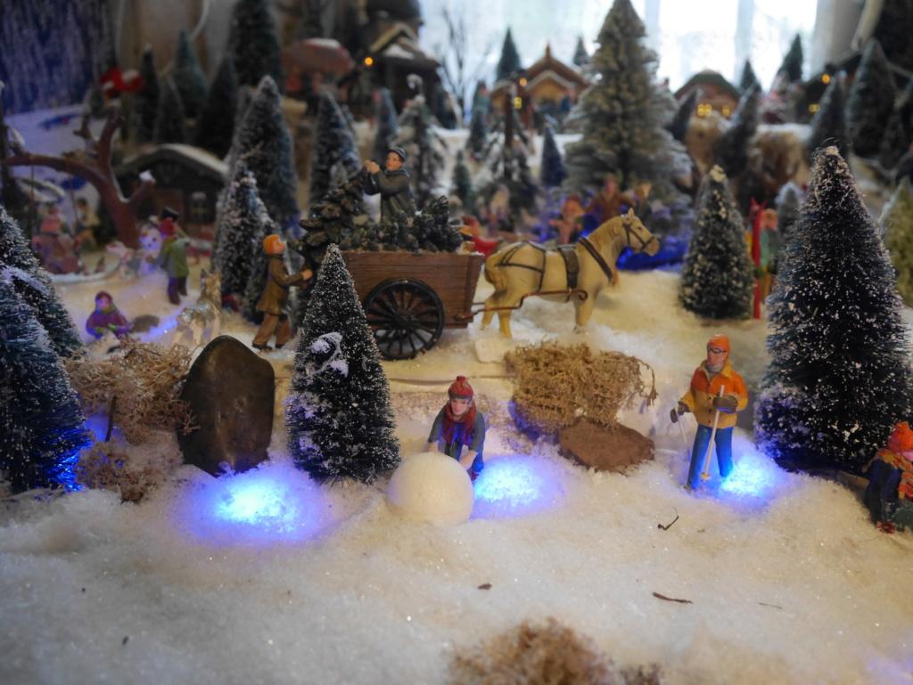 Noël montagnard 2020 de Cecéé P1180212