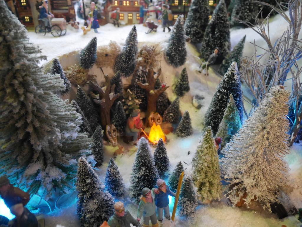Noël montagnard 2020 de Cecéé P1180214
