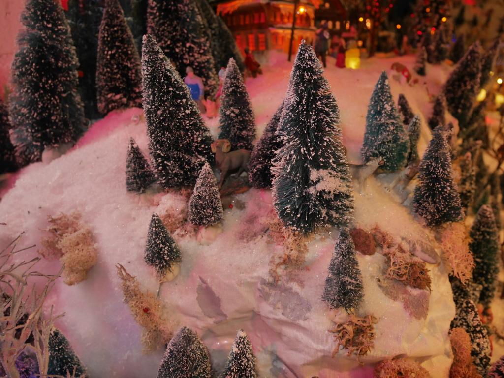 Noël montagnard 2020 de Cecéé P1180318