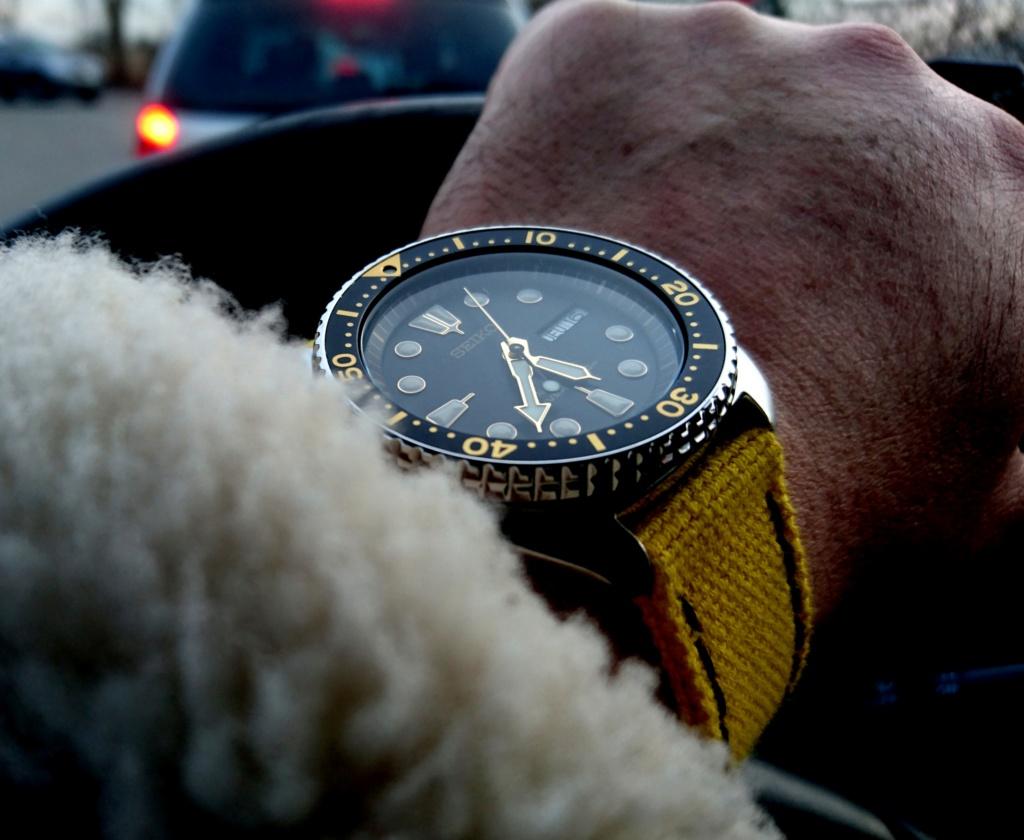 Votre montre la plus attachante... Dsc_0210