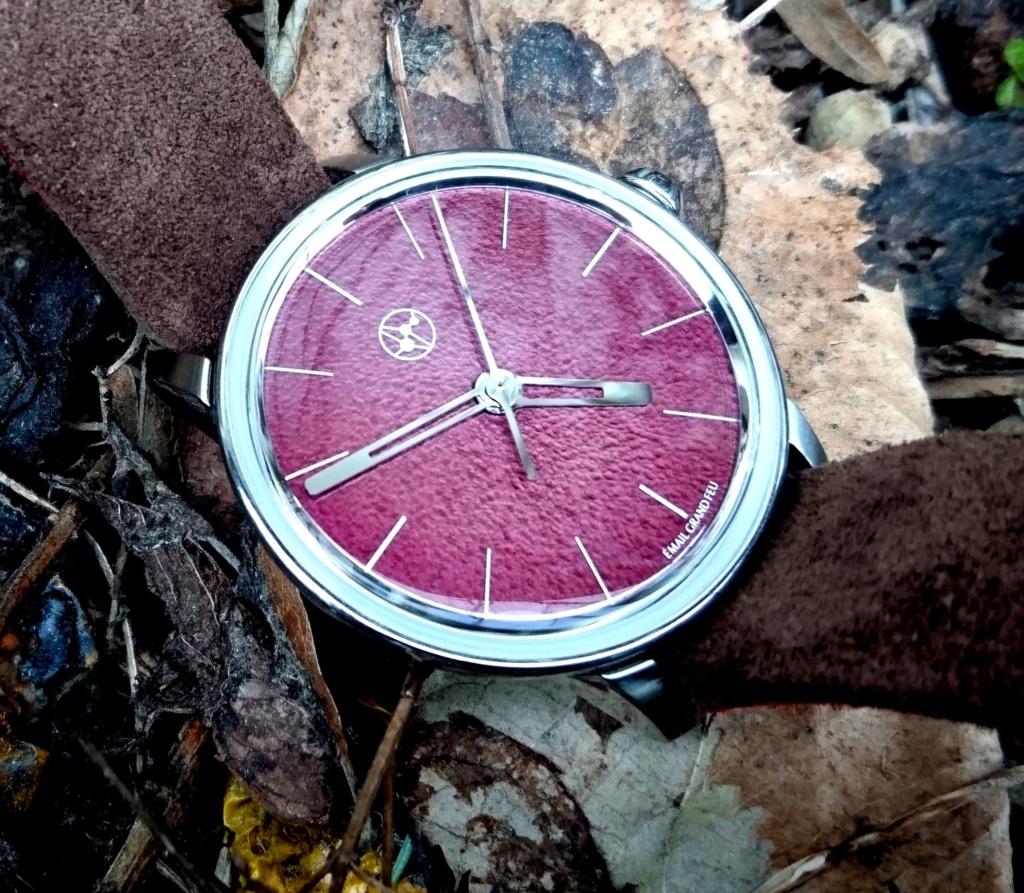 Lundis Bleus, la plus belle journée horlogère de ma vie de passionné... - Page 3 Dsc_0811
