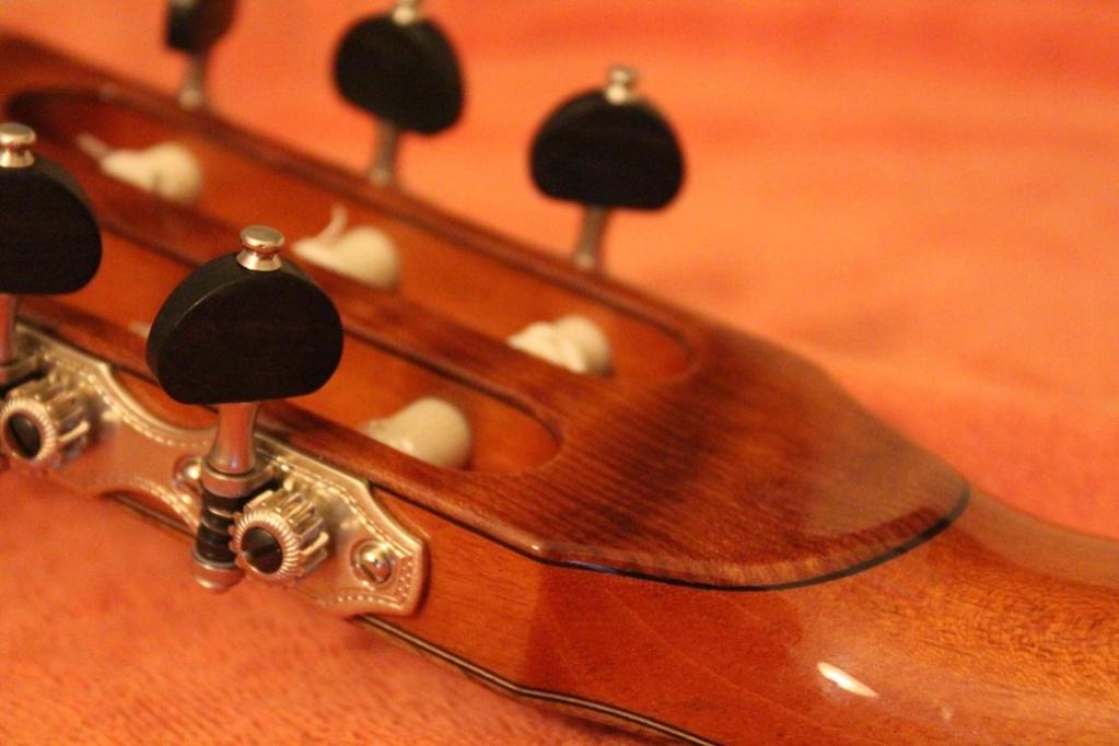 parlor du luthier espagnol David solé (Leno guitars) - Page 2 Img_6411