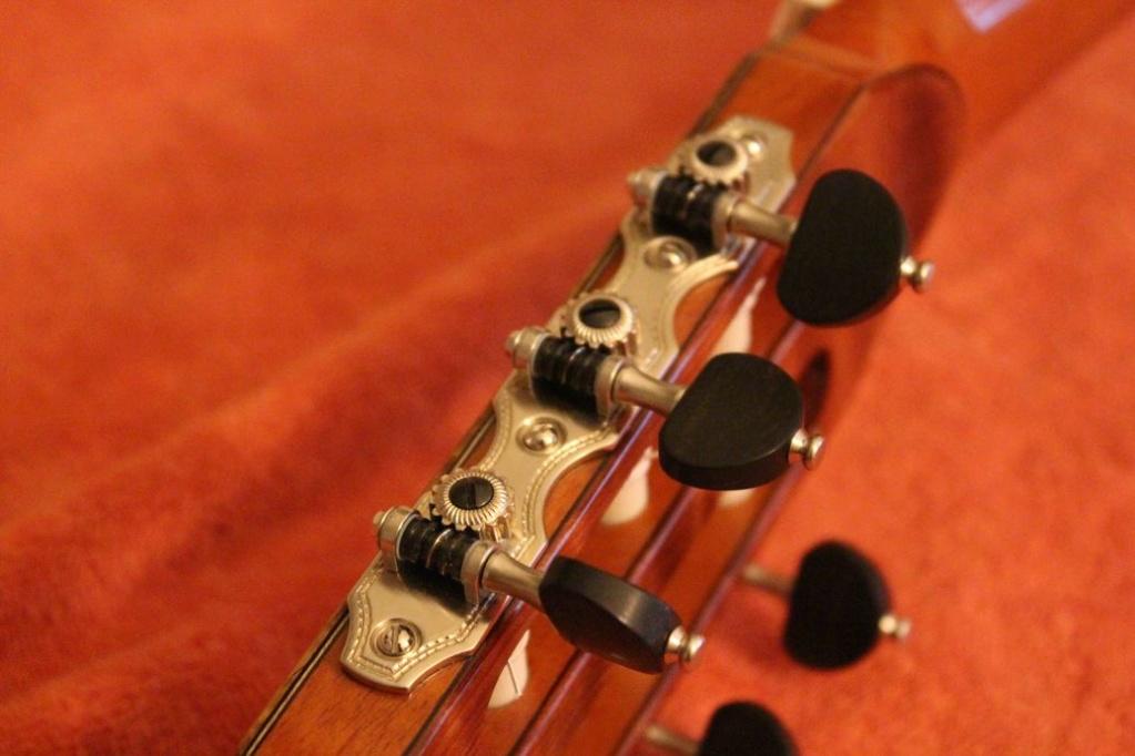parlor du luthier espagnol David solé (Leno guitars) - Page 2 Img_6412