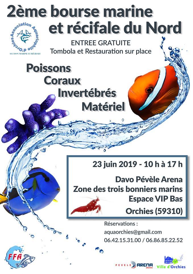 Bourse d'Orchies (59310) 53441910