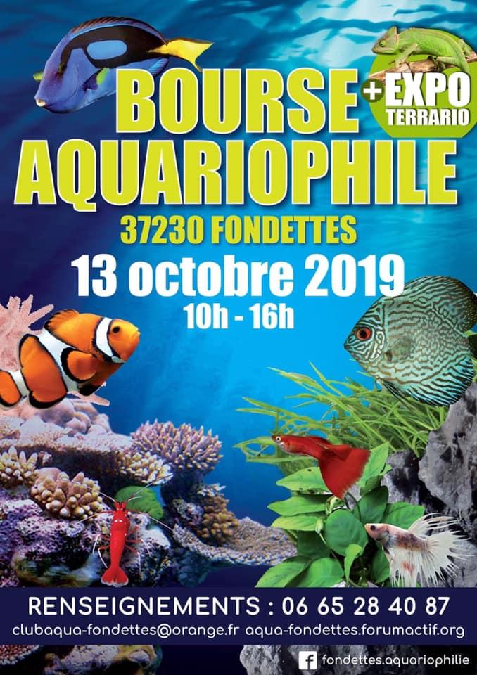 bourse aquariophile la Fondettes  53739810