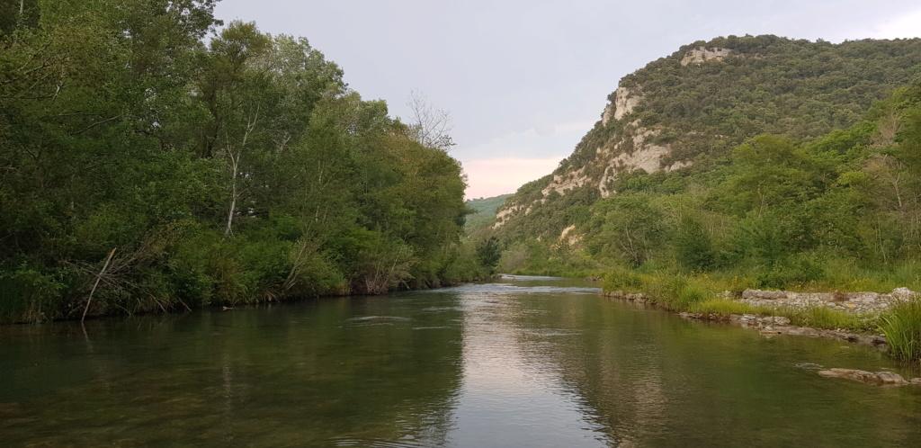Re-sortie en Provence - Page 5 20190713