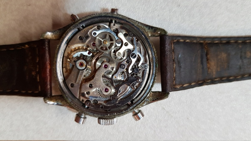 Eterna -  [Postez ICI les demandes d'IDENTIFICATION et RENSEIGNEMENTS de vos montres] - Page 21 20190812