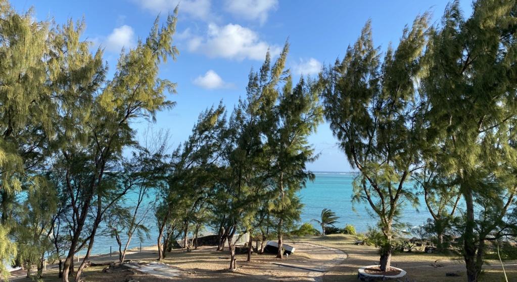 """Mauritius Kite Dream"" All in One  - Page 11 91eb1510"