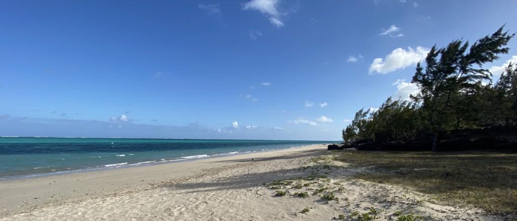 """""""Mauritius Kite Dream"""" All in One  - Page 11 97e47c10"""
