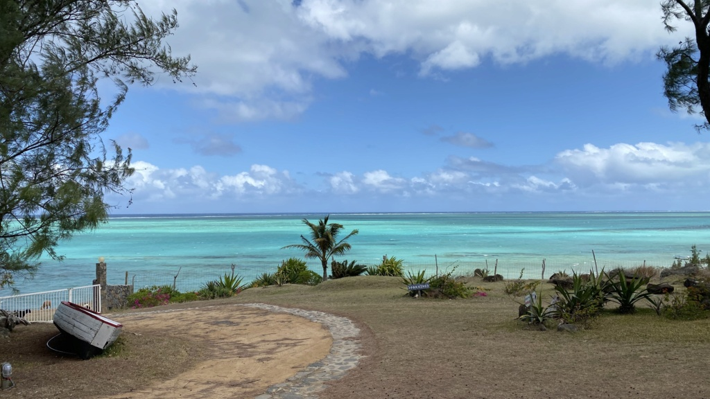 """""""Mauritius Kite Dream"""" All in One  - Page 11 D59d7310"""