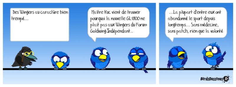 Le sport en Goldwing 09-12-10