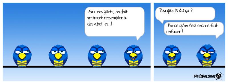 Dessin remarquable de la Revue de Presque qui Cartoone - Page 4 Alemyr12