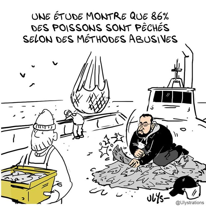 Actu en dessins de presse - Attention: Quelques minutes pour télécharger - Page 17 Dzq2mt10