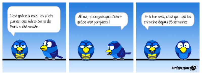 Actu en dessins de presse - Attention: Quelques minutes pour télécharger - Page 18 Olivie16