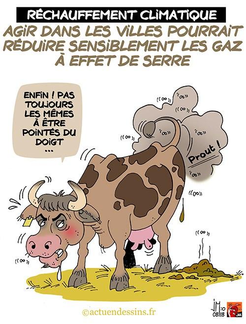 Actu en dessins de presse - Attention: Quelques minutes pour télécharger - Page 15 Pollut10