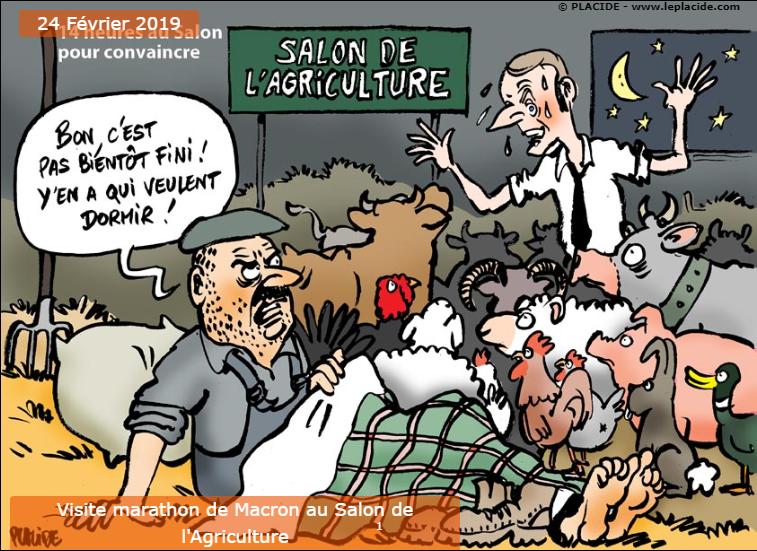 Actu en dessins de presse - Attention: Quelques minutes pour télécharger - Page 17 Snip_535