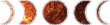 [Chevalier Bronze] Nagendra Tuncay & Llyr Cresce10
