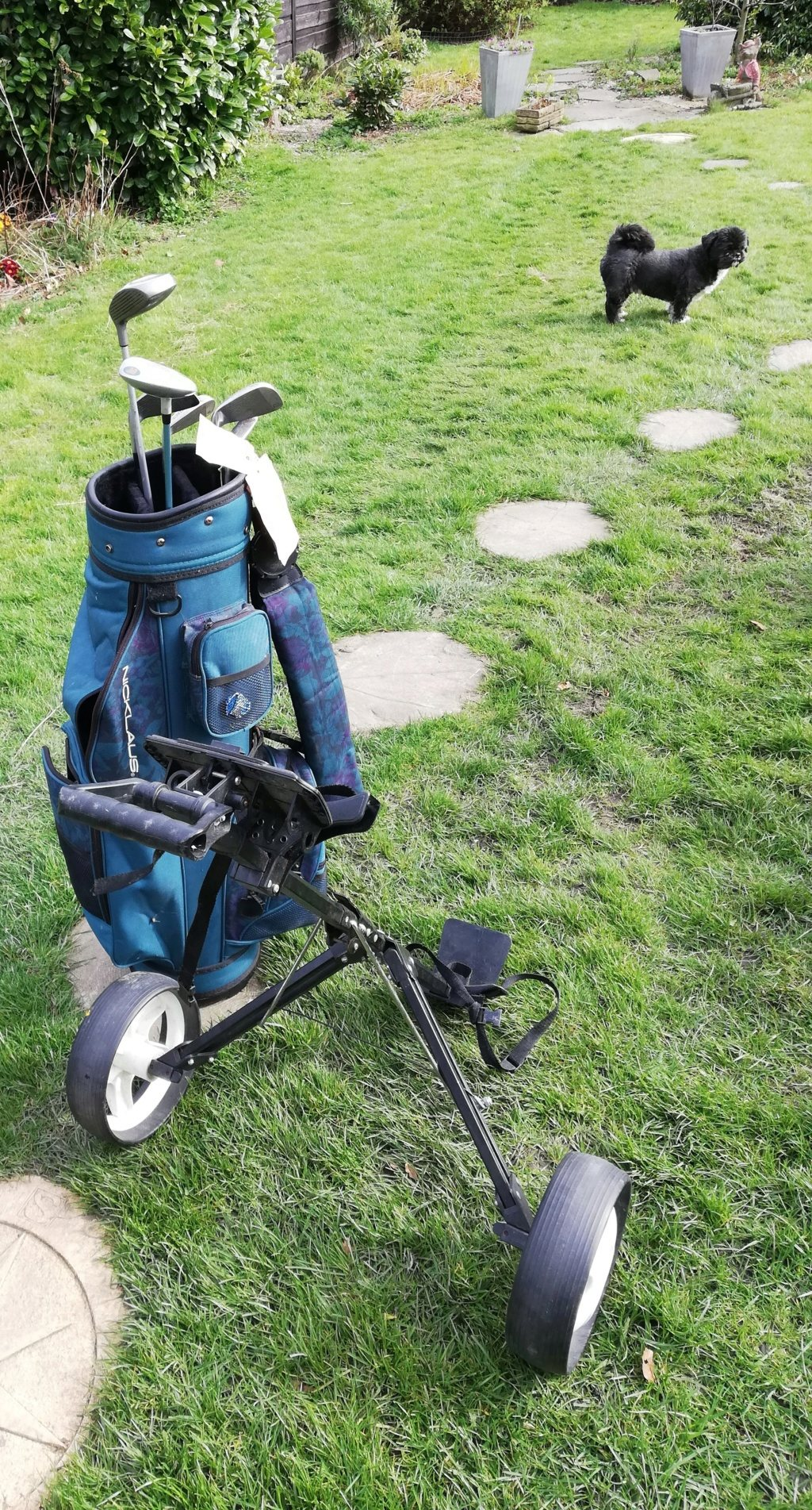 Quarantine party Golf_b10