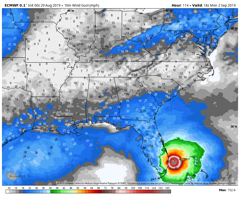 2019 TROPICAL SEASON - Page 4 Ecmwf-11