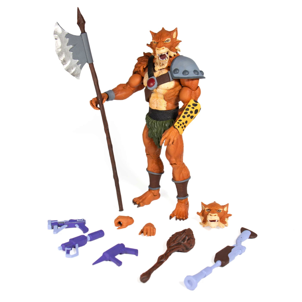 Cosmocats / Thundercats (Super 7) nouvelle gamme 20XX  - Page 4 Ae689010