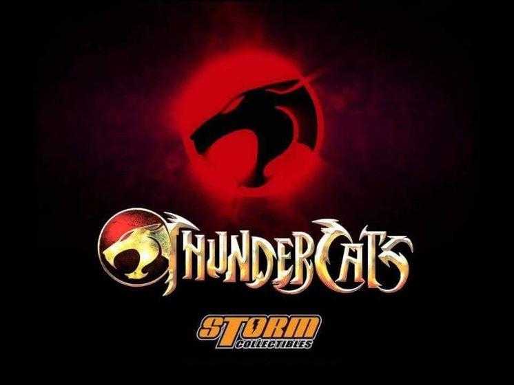 Cosmocats /Thundercats Storm Collectibles Img_0424