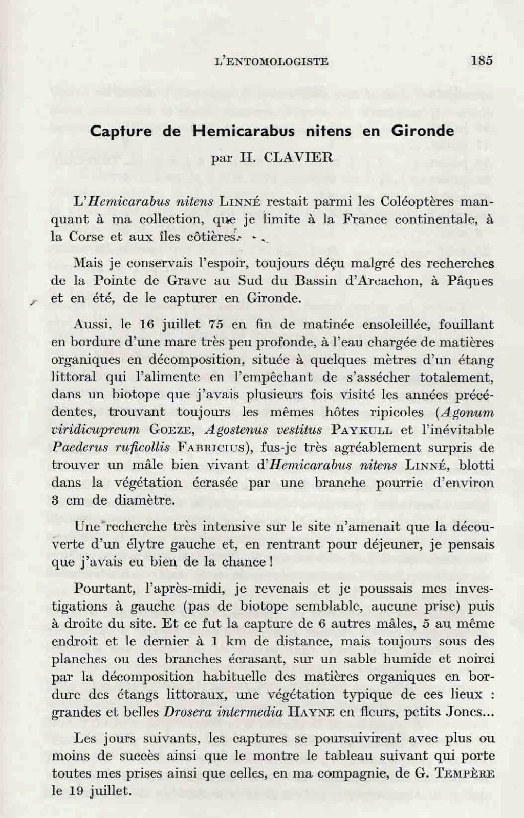 [Carabus (Hemicarabus) nitens nitens], Linné 1758 - Page 2 Clavie11