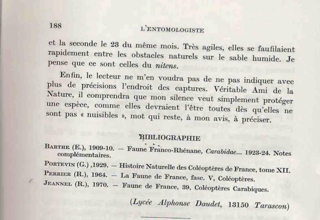 [Carabus (Hemicarabus) nitens nitens], Linné 1758 - Page 2 Clavie18