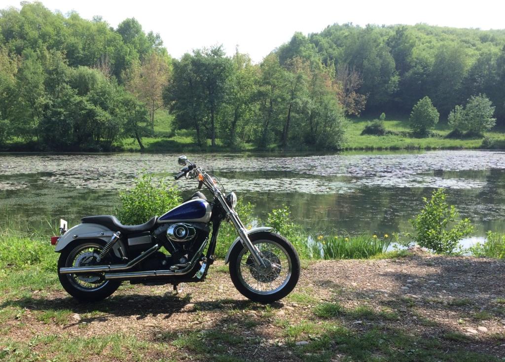 Ce que vous pensez de votre Harley ? - Page 2 Img_2710