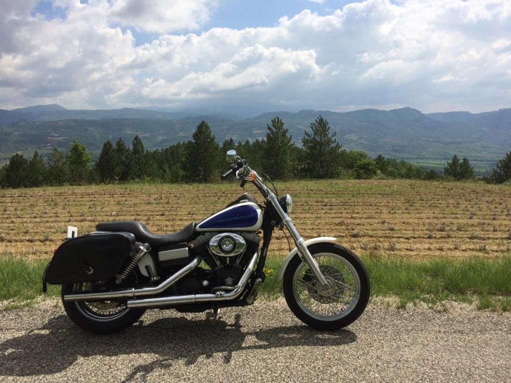 Ce que vous pensez de votre Harley ? - Page 2 Img_2711