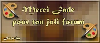 """N °  41 PFS """" Fond Bannière """" :"""" Effet Mosaïque"""" Cours_11"""